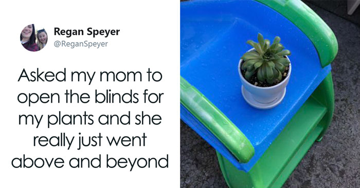 Daughter Asks Her Mom To Take Care Of Her Plants, Mom Uses It As An Opportunity To Hint About Wanting Grandkids