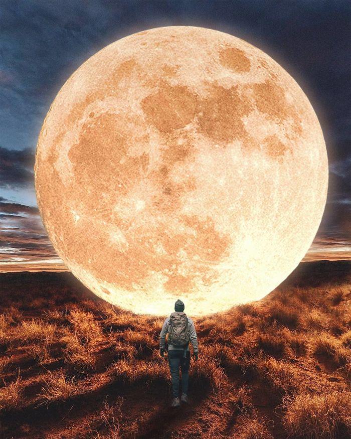 Dream Moon