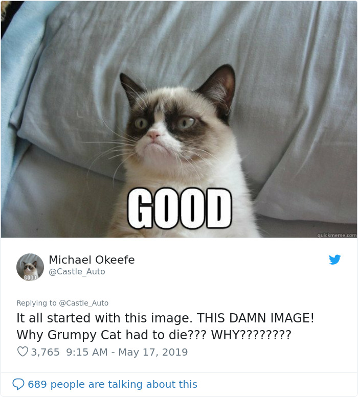 Grumpy Cat Dies Aged 7