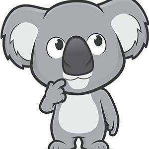 Koala King