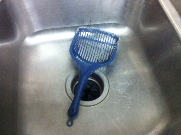 My Roommate Leaves Her Cat's Litter Box Scoop In Our Kitchen Sink