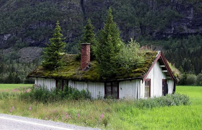 Abandoned House, Norway Style