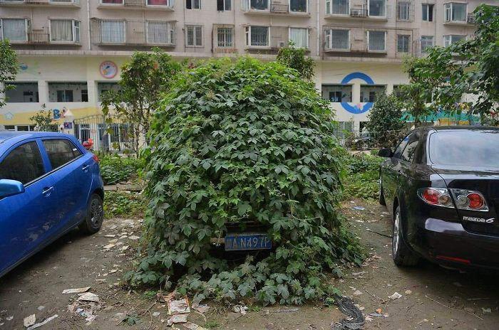 Abandoned Car In Beijing