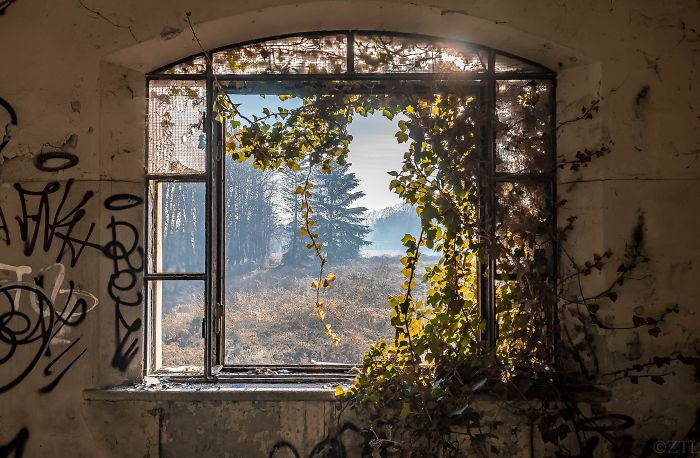 Abandoned Asylum In Italy That Has Been Touched By Bob Ross