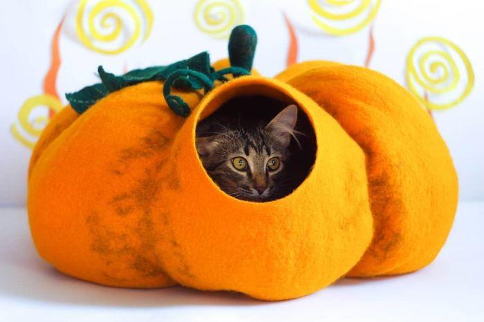 Pumpkin Cat Bed