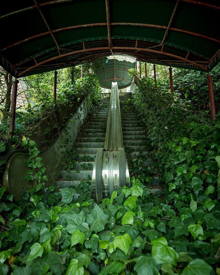 Destined To Be Green. Abandoned Escalator