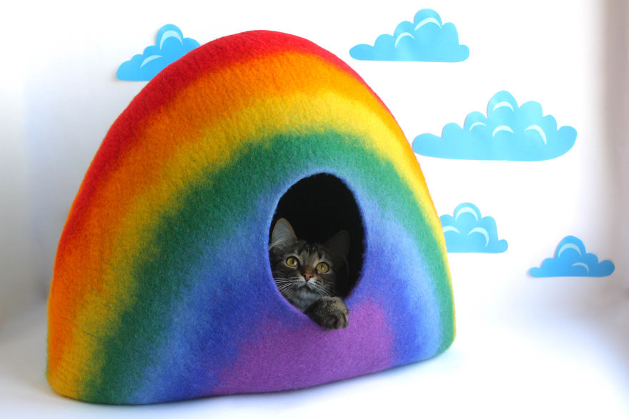 Rainbow Cat Bed