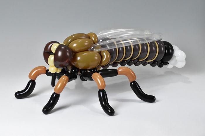 Assassinfly