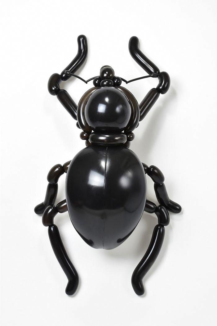 Weevil (Pachyrhynchus Infernalis)