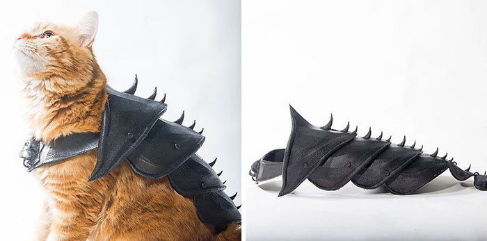 Guy Turns His Cat Into A Total Badass With This 3D Printed Armor
