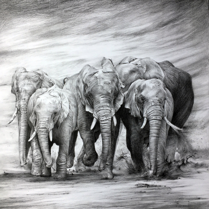 One Pen And One Month Later: Drawing My 5 Elephants