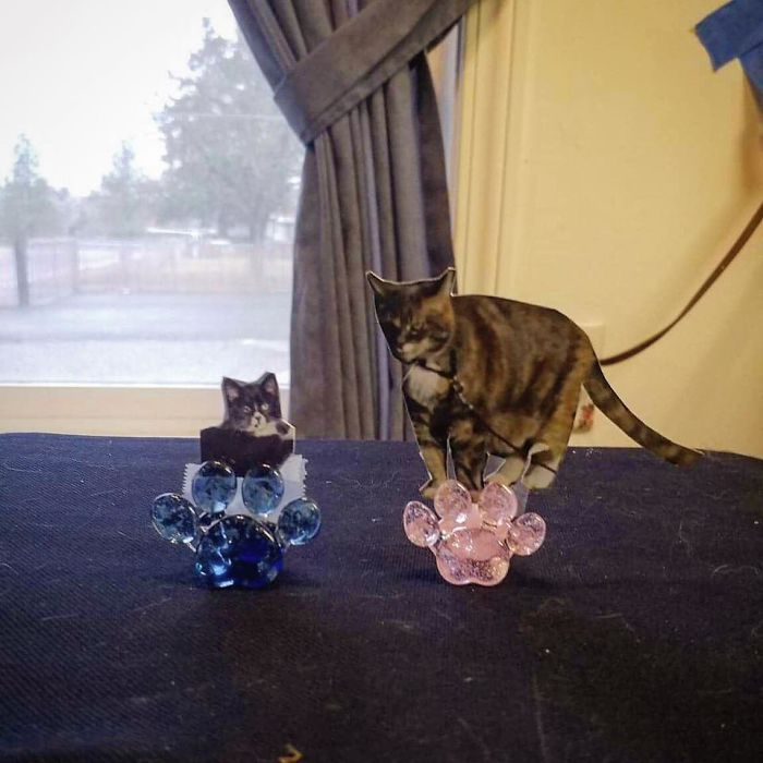 Company Turns Ashes Of People's Beloved Pets Into Glass Replica Paws That Will Serve As A Memorial Forever