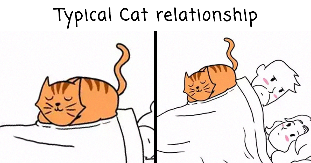 61 Funny Comics That Purrfectly Capture Life With Cats