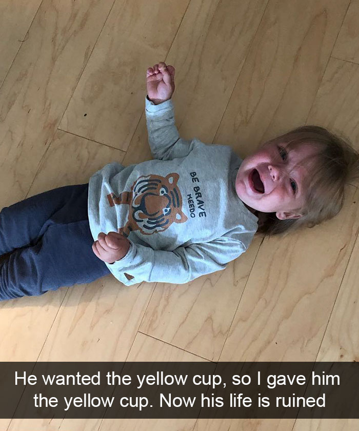 He Wanted The Yellow Cup, So I Gave Him The Yellow Cup. Now His Life Is Ruined