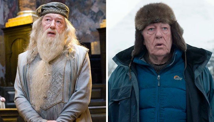 Michael Gambon (Albus Dumbledore)