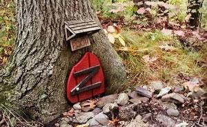 40 Personas que encontraron algo raro en el bosque y tuvieron que compartirlo