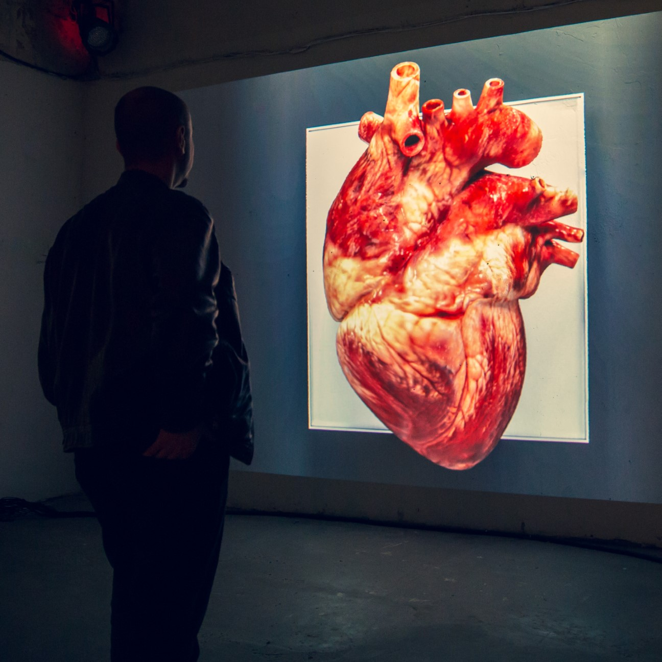This Impressive Art Installation Is Synchronized With The Viewer's Heartbeat