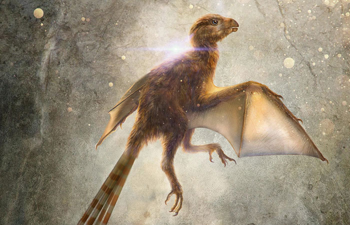 Scientists Just Discovered 163 Million-Year-Old Dinosaur Remains And Looks Like They Had Bat Wings