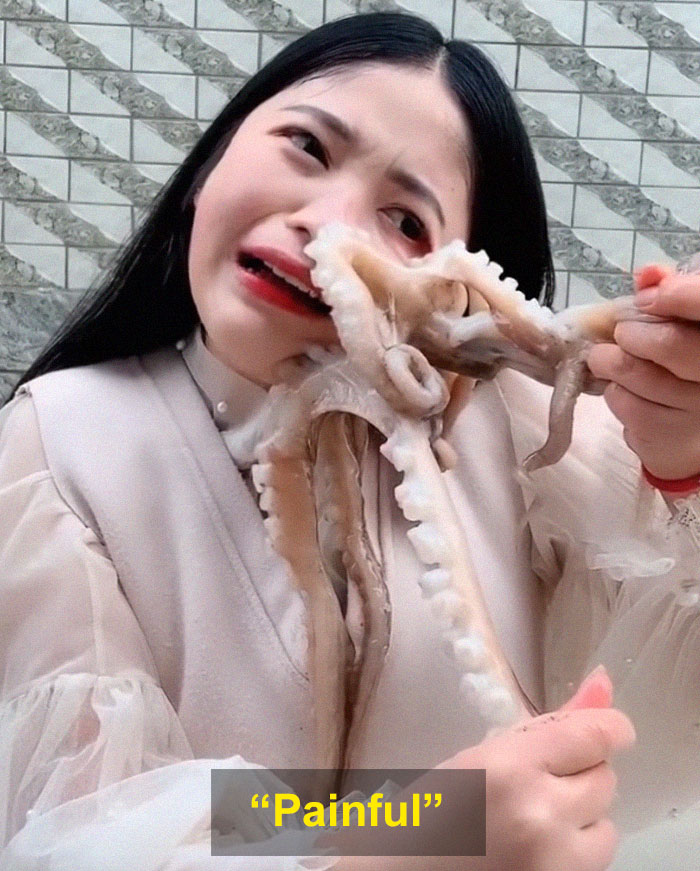 Octopus Attacks Woman That Tried To Eat It Alive