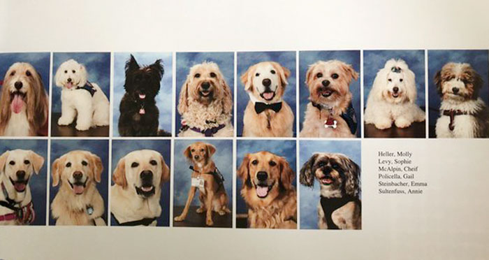 This School Dedicated A Yearbook Page To The Parkland Shooting Survivors' Therapy Dogs