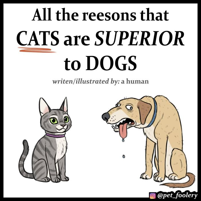 4 Hilarious Comics Explaining Why Cats Are Better Than Dogs