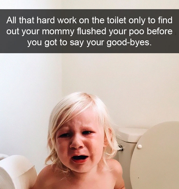 All That Hard Work On The Toilet Only To Find Out Your Mommy Flushed Your Poo Before You Got To Say Your Good-Byes.