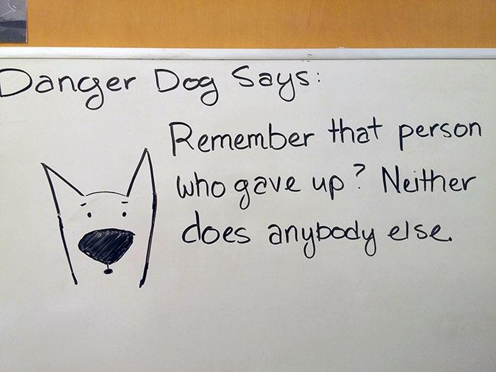Thanks Again, Danger Dog