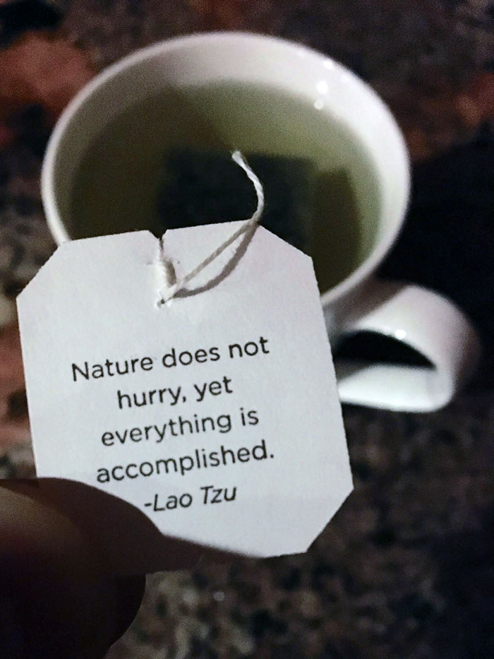 My Tea Had Some Solid Motivation For Me Today