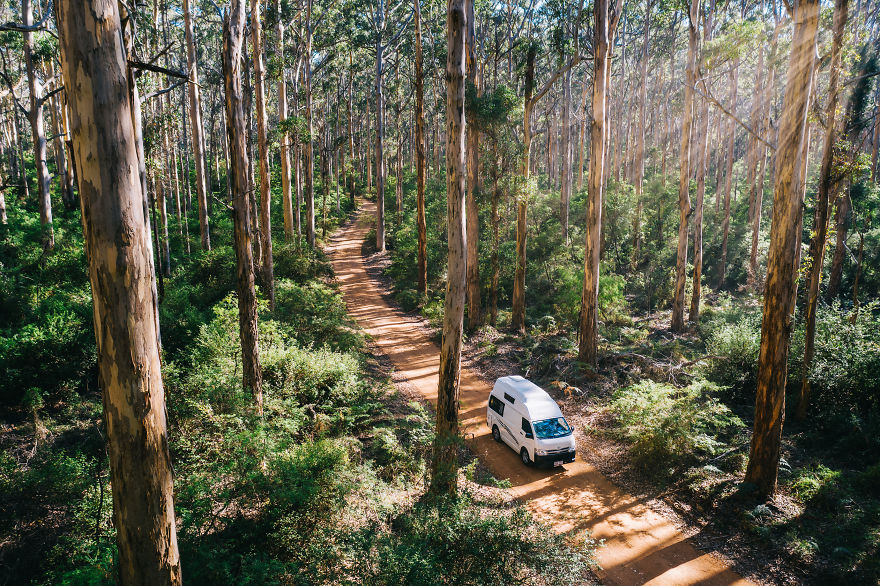 Driving Through Karri Forests