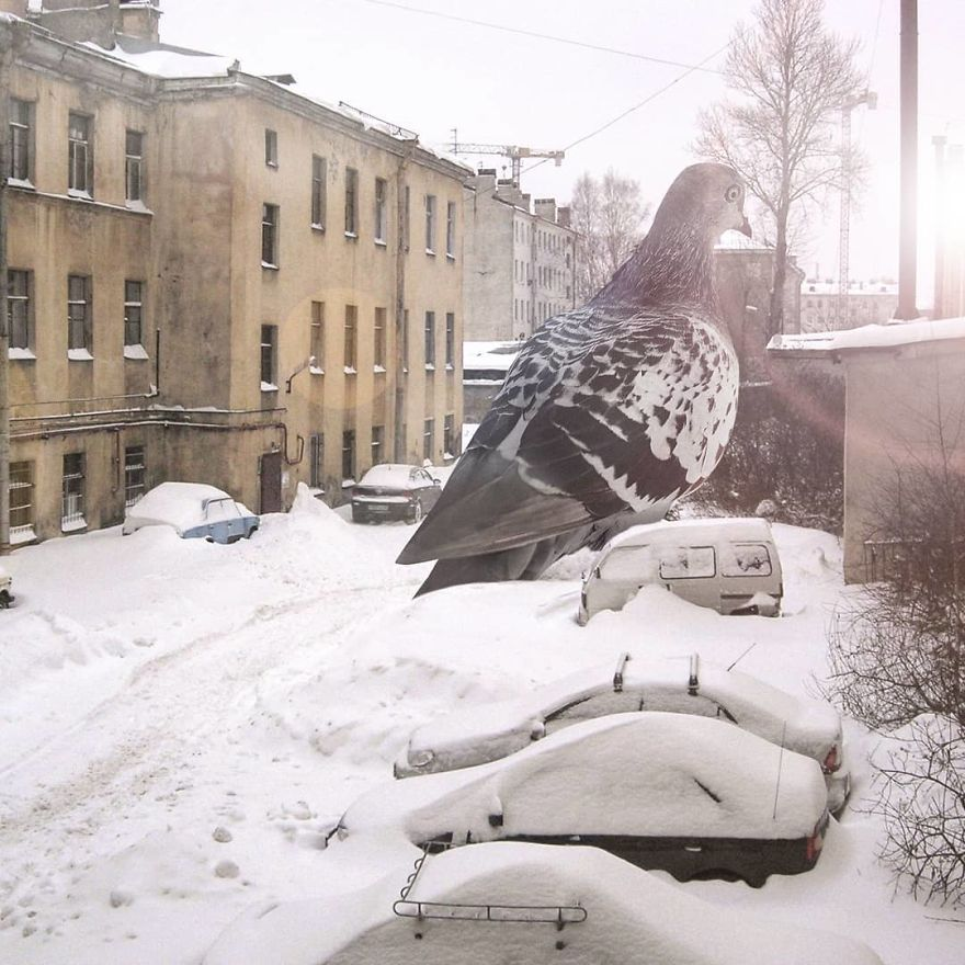 """Russian Artist Has Populated The City Of St. Petersburg With """"Fantastic Creatures"""" And The Result Is Impressive"""