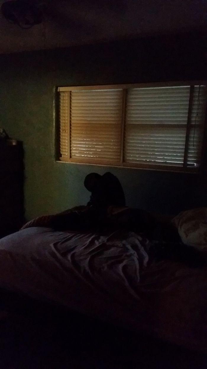 Llegué tarde a casa y esto estaba al borde de mi cama. No me podía ni mover del miedo