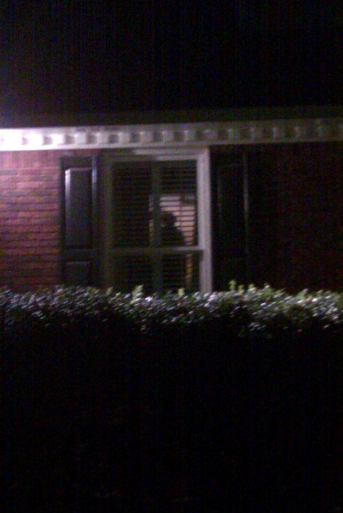 Llegué a mi casa y vi una figura dentro. Llamé a la policía y revisaron toda mi casa. Era la colada colgando