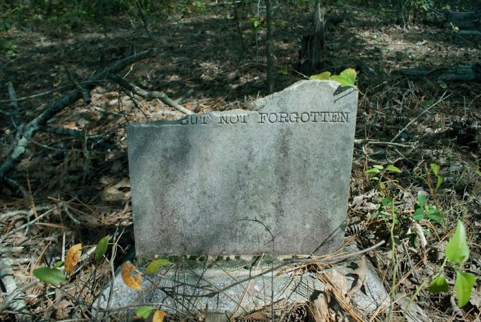 Came Across An Overgrown Cemetery In The Woods