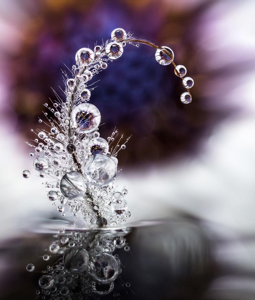 قطرات الماء