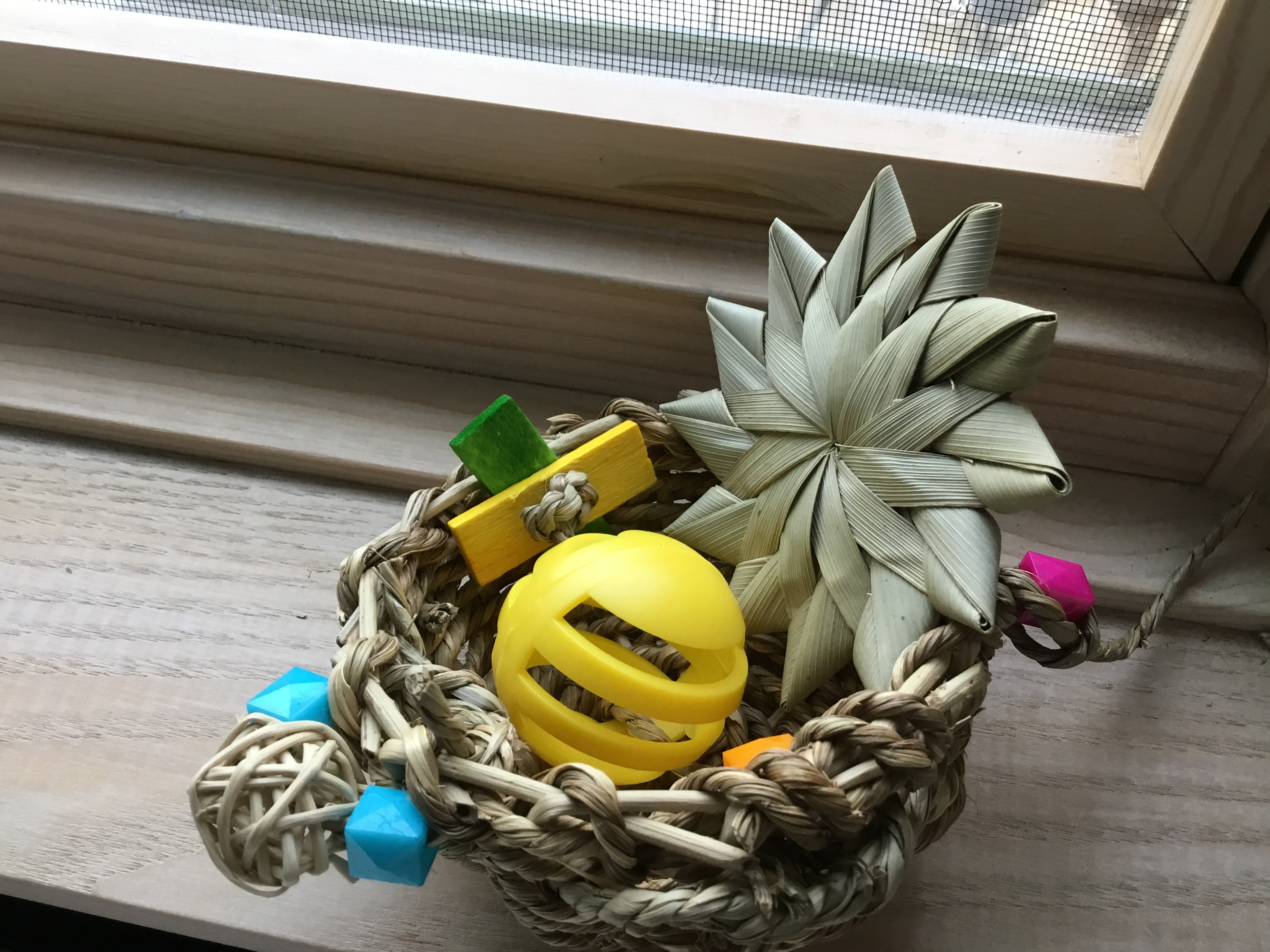I Create Whimsical Bird Toys To Support My Small Animal Rescue