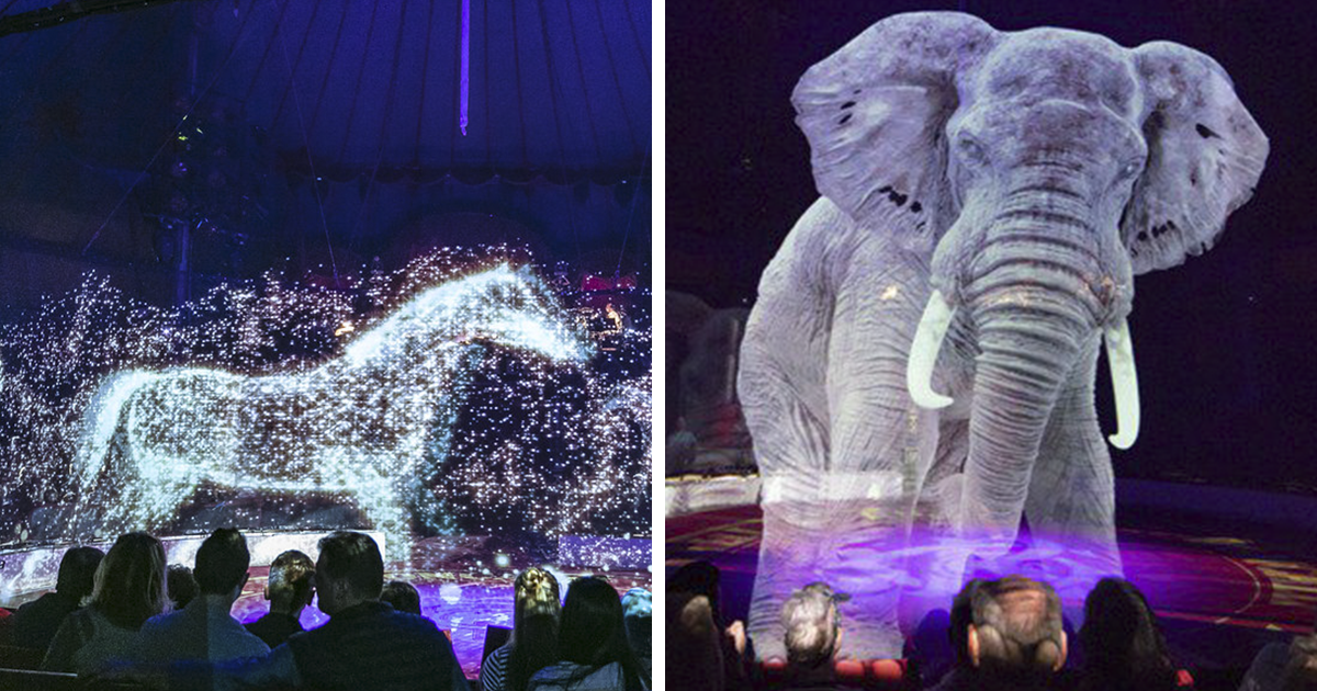 German Circus Uses Holograms Instead Of Live Animals For A Cruelty-Free Magical Experience