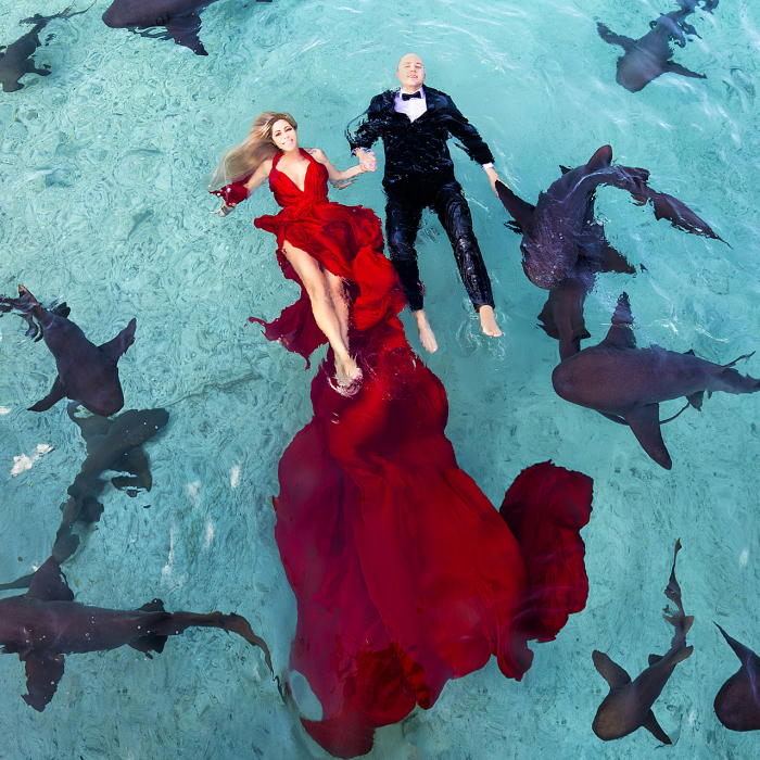 I Brought An Adventurous Couple To Exuma To Swim With Sharks, Pigs, And Stingrays
