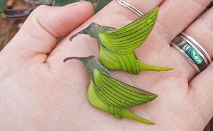 Los pétalos de esta flor parecen colibríes