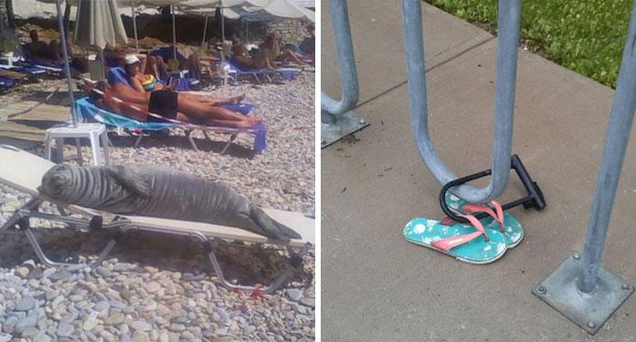 30 Cosas interesantes en la playa que la gente tuvo que compartir