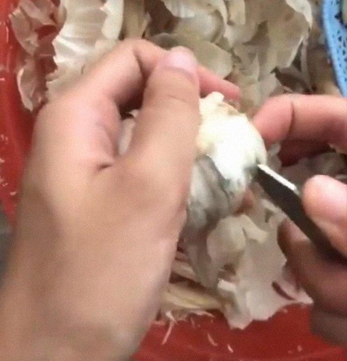 Se vuelve viral el truco de esta mujer para pelar ajo, y la gente lamenta el tiempo perdido haciéndolo mal