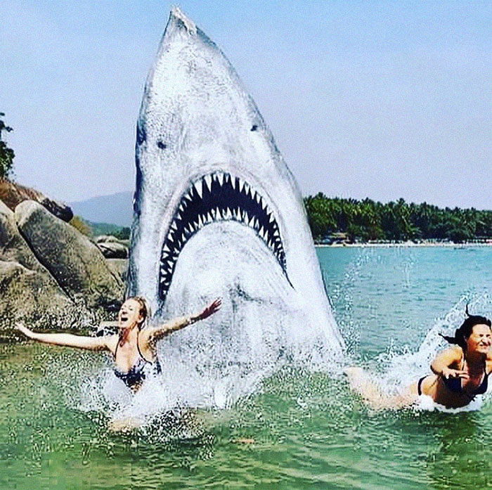 Graffiti Artist Turns A Beach Stone Into A Great White Shark And People Post Their Best Pics With It
