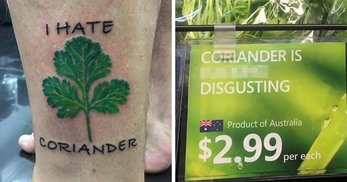 This Facebook Group Is Dedicated To Coriander (Cilantro) Haters And Here Are The 50 Funniest Images