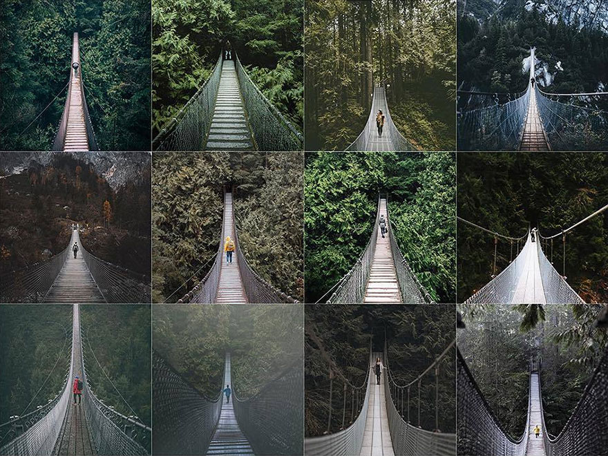 Bridges In The Woods With A Person
