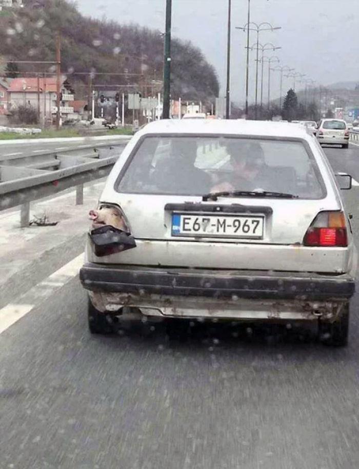 Meanwhile In Bosnia