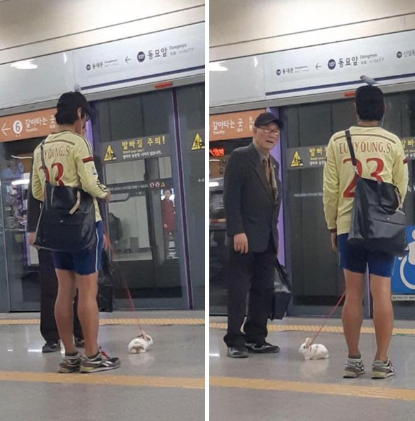 Meanwhile In Korea