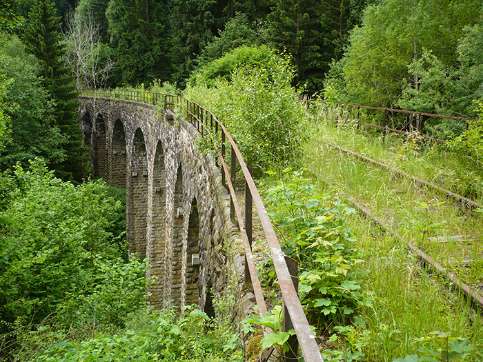 Abandoned Railway Bridge In Czech Republic