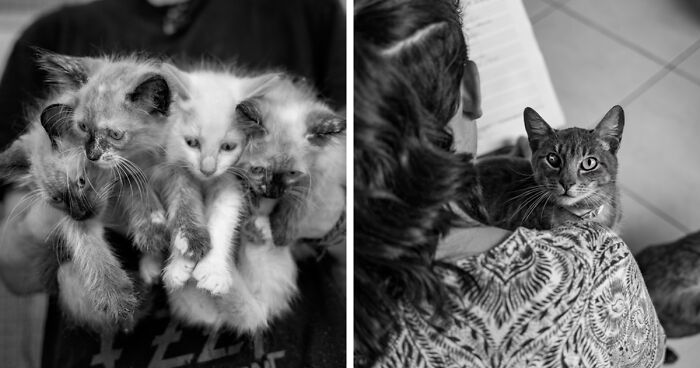 I Capture What It Takes To Be A Volunteer At An Animal Rescue Center (17 Pics)