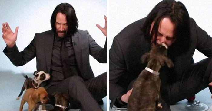 27 Awesome Things About Keanu Reeves That Will Make You Fall In Love With Him Even More