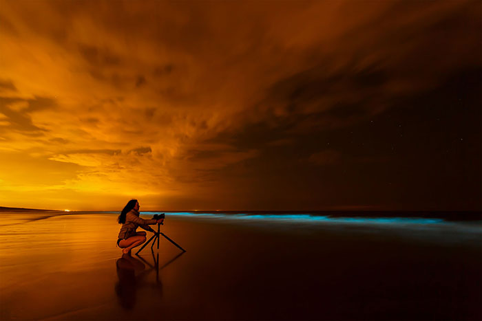My 10 Fairy-Like Pics Show The Presence Of Sea Sparkle On The Dutch Coast