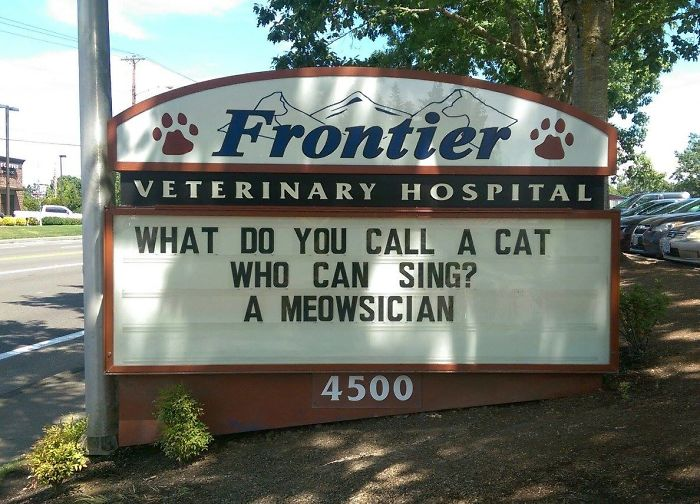 Funny-Cat-Veterinary-Clinic-Signs